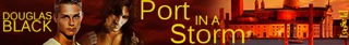 DB_PortInAStorm_banner